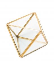 Terrarium Le Mignon doré 11 x 15,5 cm