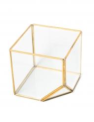 Terrarium Le graphique doré 11,5 x 12 cm
