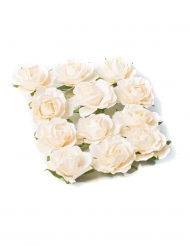 12 Roses à piquer ivoire 3,5 cm