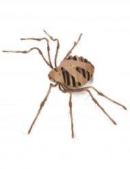 Araignée Momie 75 cm