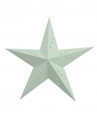 Lanterne étoile vert pastel 60 cm