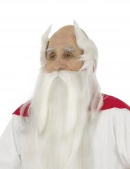 Perruque et barbe Panoramix™ - Astérix et Obélix™