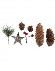 Assortiments 20 décorations naturelles 4 à 10 cm