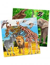 20 Serviettes en papier Safari 33 x 33 cm