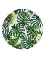 8 Assiettes en carton Tropical vert 23 cm