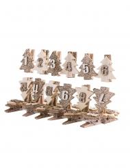 Kit calendrier de l'avent 24 pinces à paillettes cuivrées