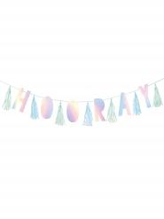 Guirlande fanions Hooray Shimmering Party 3 m