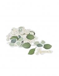 100 Confettis amour eucalyptus 2,3 à 5 cm
