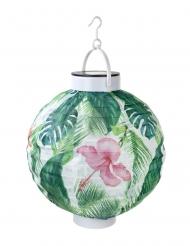 Lanterne solaire en papier tropical 21 cm