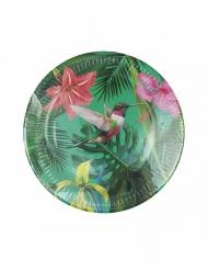 12 Assiettes en carton tropical des îles 23 cm