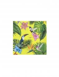 20 Serviettes en papier tropical des îles 33 x 33 cm