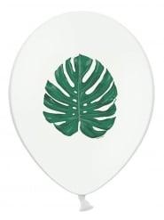 6 Ballons en latex blancs feuille tropicale verte 30 cm