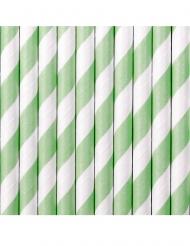 10 Pailles en carton rayées blanches et vertes 19,5 cm