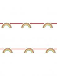 Guirlande en carton métallisée rainbow party 2 m