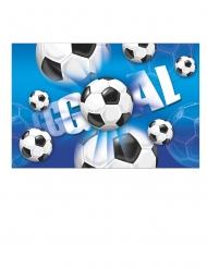 Nappe en plastique football goal 120 x 180 cm