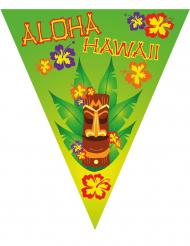 Guirlande fanions Hawaï 5 m