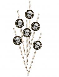 6 Pailles en carton Pirate Jolly Roger 24 cm