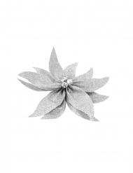 Nœud de poinsettia avec grelots pailleté argenté 20 cm