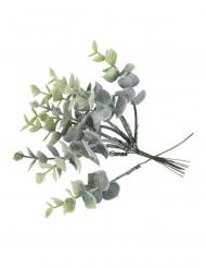 10 Branches eucalyptus enneigées sur tige 17 cm