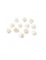 12 Mini pommes de pin paillettes blanches 2 cm