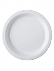 20 Assiettes carton blanc 26 cm