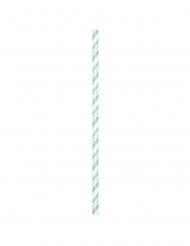 24 Pailles en carton flexibles menthe 19,7 cm