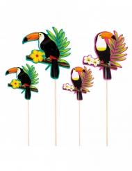 4 Pics en bois toucan 25 - 17,5 cm