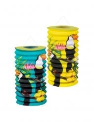 2 Lanternes en papier toucan 16 cm