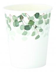 8 Gobelets en carton eucalyptus vert 255 ml