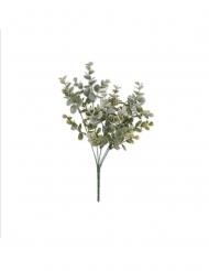 Bouquet feuilles eucalyptus vert 35 cm