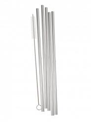 5 Pailles réutilisables en acier argenté avec brosse 21 cm