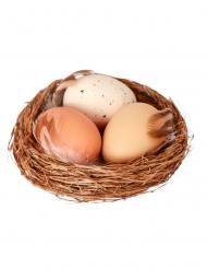 Nid naturel avec 3 œufs 9 cm
