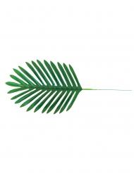 4 Feuilles de palmier 40 x 18 cm
