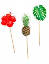 12 Pics tropicaux fleur, feuille et ananas