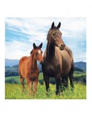 16 Serviettes en papier Jolis chevaux 33 x 33 cm