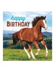 16 Serviettes en papier Happy Birthday Jolis chevaux 33 x 33 cm