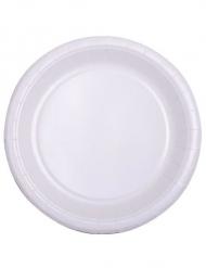 50 Petites assiettes en carton blanc 18 cm