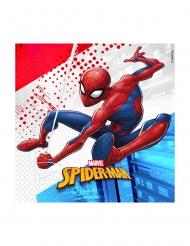 20 Serviettes en papier compostable Spiderman™ 33 x 33 cm