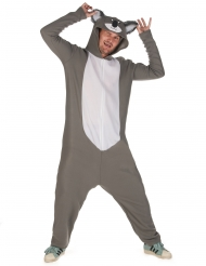 Déguisement koala homme
