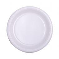 10 Assiettes en carton blanc 22 cm