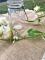 Vase en verre Mason jar 13 cm-1