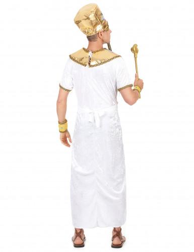 Déguisement complet roi égyptien homme-2