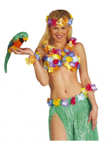 Perroquet des îles Hawaï 40 cm-1