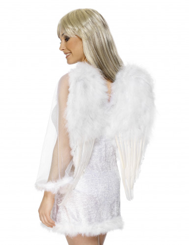 Ailes blanches avec plumes adulte