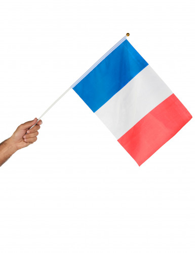 Drapeau de supporter France-1