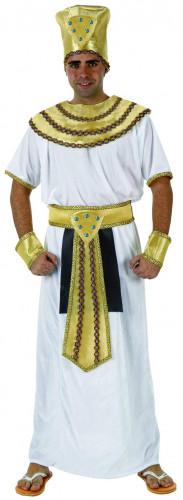 Déguisement roi égyptien homme