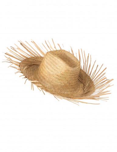 Chapeau de paille -1
