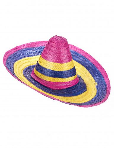 Sombrero multicolore en paille adulte