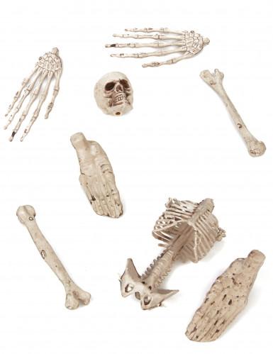 Sac d'os 8 pièces Halloween