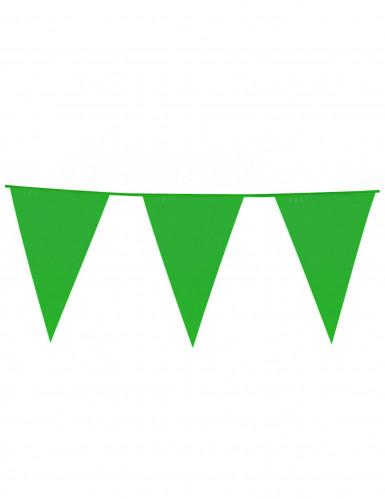Guirlande à fanions géants verts 10m